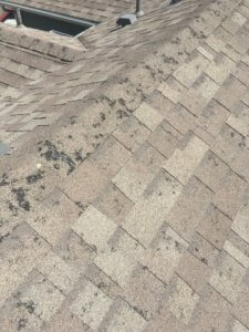 Hail Damaged Roof?